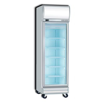 Upright Display Freezer 1 Door Front View